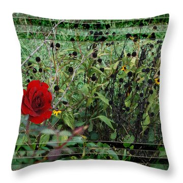 Inner Layers Throw Pillow by Kelly Rader