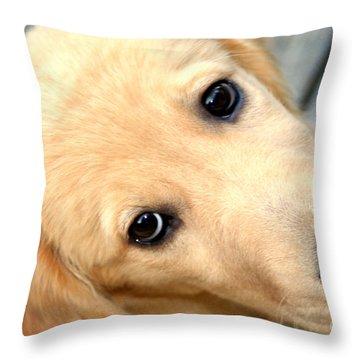 Innocent Abby Throw Pillow by Susan Stevenson