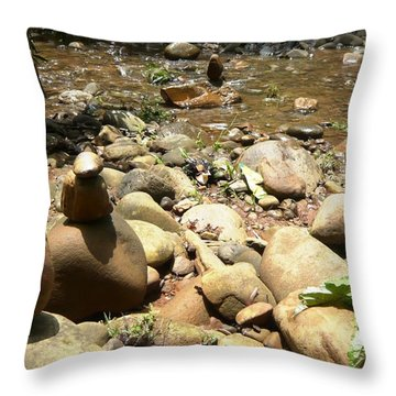 Installation By The River Throw Pillow by Piety Dsilva