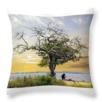 Introspective Throw Pillow by Brian Wallace