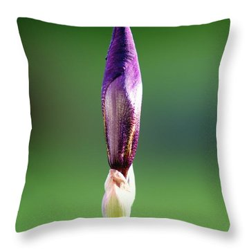 Iris 12 Throw Pillow by Nathan Larson