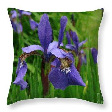 Irises Throw Pillow by Randi Shenkman