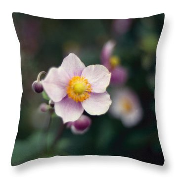Japanese Anemone  Throw Pillow by Marcio Faustino