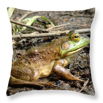 Jeremiah Throw Pillow by Meandering Photography
