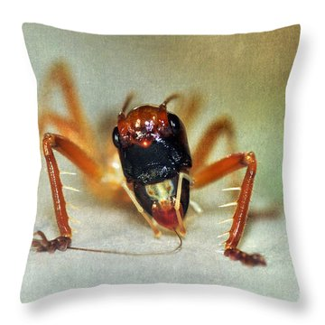 Jiminy Cricket 2 Throw Pillow by Kaye Menner