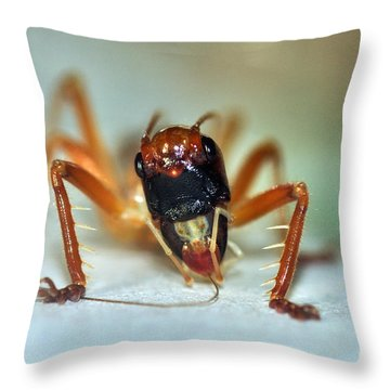 Jiminy Cricket Throw Pillow by Kaye Menner