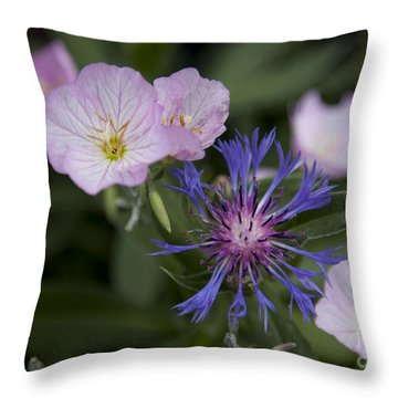 Joined Throw Pillow by Amanda Barcon