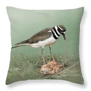 Killdeer And Worm Throw Pillow by Betty LaRue