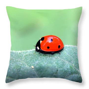 Ladybug II Throw Pillow by Ester  Rogers