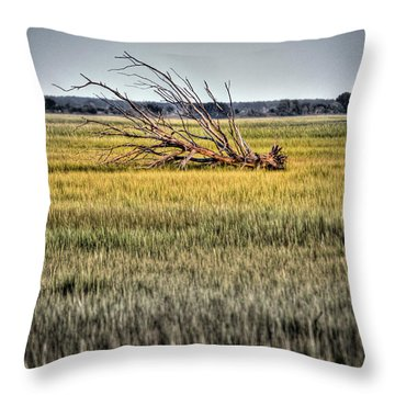 Laid To Rest Throw Pillow by Andrew Crispi