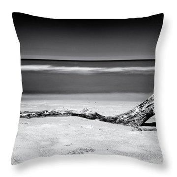 Lake Huron Throw Pillow by Tanya Harrison