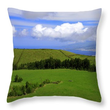 Landscape With Crater Throw Pillow by Gaspar Avila