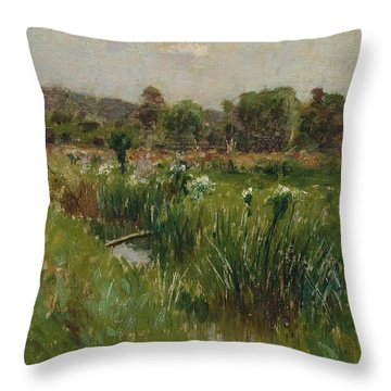 Landscape With Wild Irises Throw Pillow by Bruce Crane