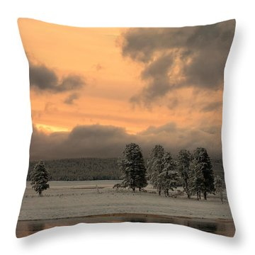 Late Spring Storm In Yellowstone Throw Pillow by Sandra Bronstein