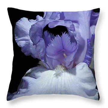Lavender Blue Iris Throw Pillow by Phyllis Denton