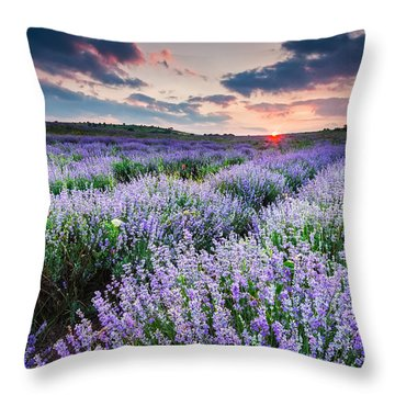Lavender Sea Throw Pillow by Evgeni Dinev