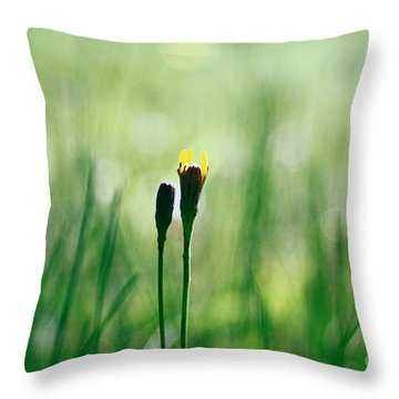 Le Centre De L Attention - Green S0101 Throw Pillow by Variance Collections