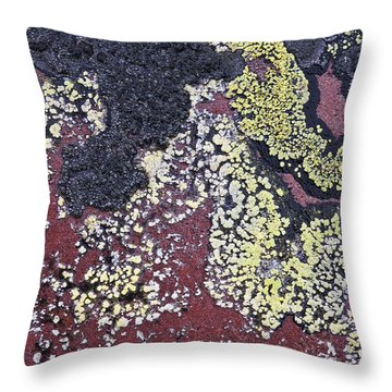 Lichen Pattern Series - 25 Throw Pillow by Heiko Koehrer-Wagner