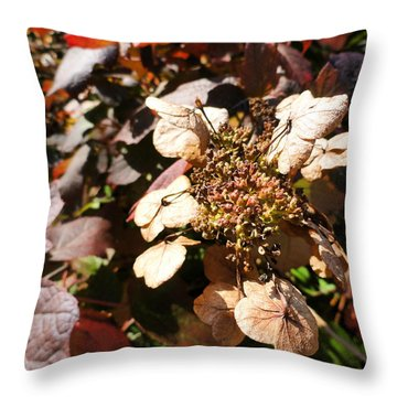 Light As Paper Throw Pillow by Trish Hale