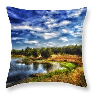 Light Peeks Through At Broemmelsiek Park Throw Pillow by Bill Tiepelman