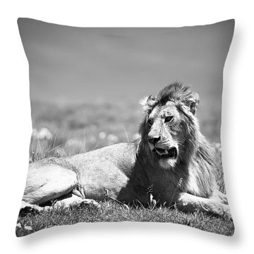 Lion King In Black And White Throw Pillow by Sebastian Musial