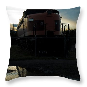 Littel Joe Reflections Throw Pillow by Tim Mulina