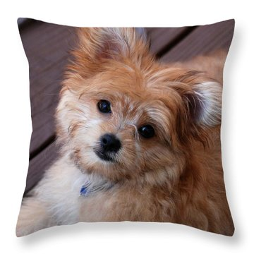 Little Darling Throw Pillow by Angie Tirado