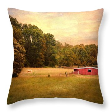 Little Red Barn Throw Pillow by Jai Johnson