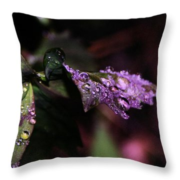 Little Water Drops Throw Pillow by Jeff Swan