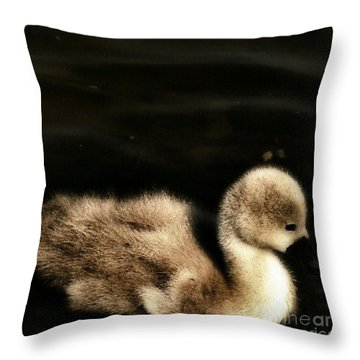 Lone Cygnet Throw Pillow by Isabella Abbie Shores
