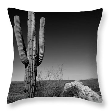 Lone Saguaro Throw Pillow by Chad Dutson