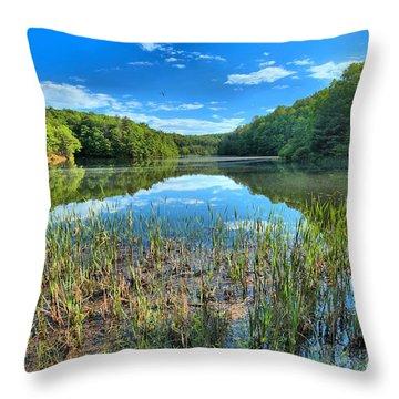 Long Branch Marsh Throw Pillow by Adam Jewell