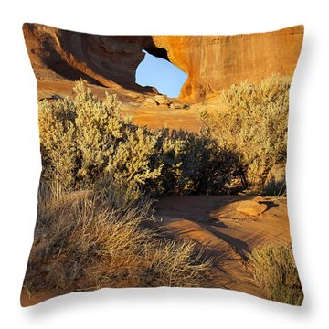Looking Glass Throw Pillow by Mike McGlothlen