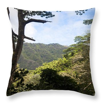 Looking Through The Trees In A Tropical Throw Pillow by Taylor S. Kennedy