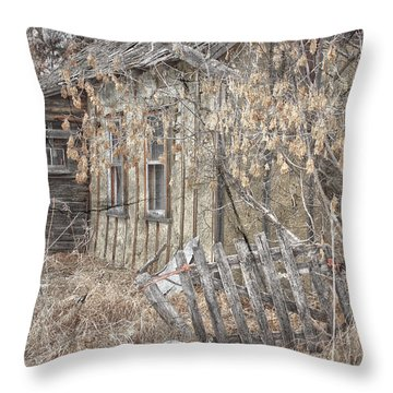 Lost Dog Throw Pillow by Jerry Cordeiro