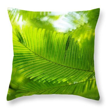 Luscious Green Light. Acacia Tree Throw Pillow by Jenny Rainbow