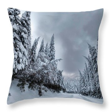 Magnificent Forest Throw Pillow by Evgeni Dinev