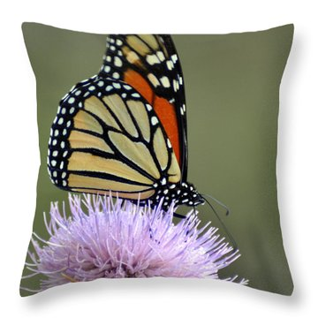 Magnificient Monarch Throw Pillow by Marty Koch