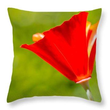 Mahogany California Poppy I Throw Pillow by Heidi Smith