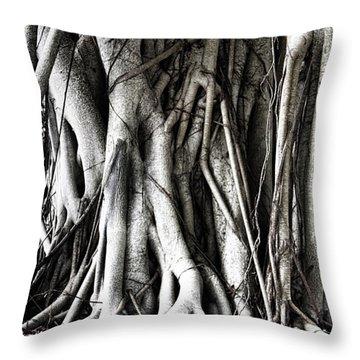 Mangrove Tentacles  Throw Pillow by Douglas Barnard