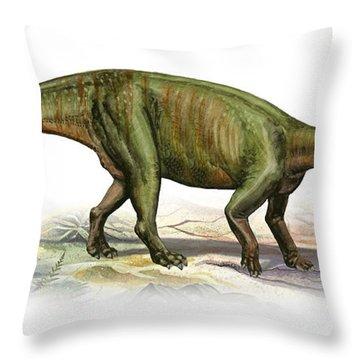 Massospondylus Carinatus, A Prehistoric Throw Pillow by Sergey Krasovskiy