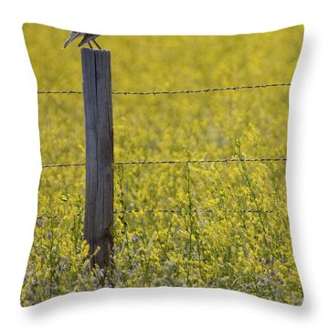 Meadowlark Singing Throw Pillow by Randall Nyhof