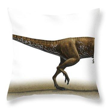 Megapnosaurus Kayentakatae Throw Pillow by Sergey Krasovskiy
