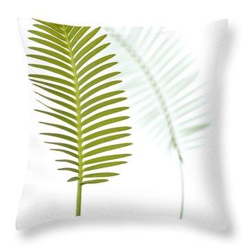 Mexican Cycad Leaf Mexico Throw Pillow by Piotr Naskrecki