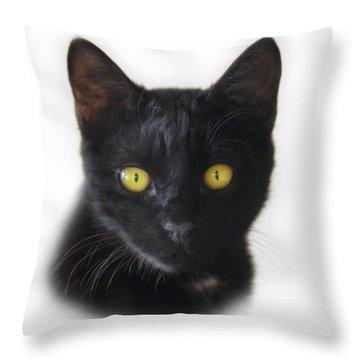 Midnight Throw Pillow by Steven Richardson