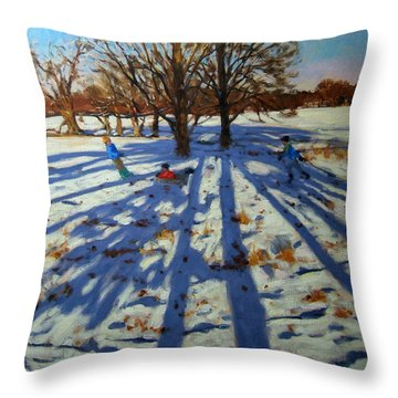 Midwinter Throw Pillow by Andrew Macara