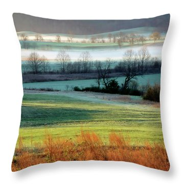 Misty Morning At Cades Cove Throw Pillow by Dave Mills