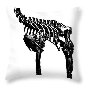 Moa Skeleton Throw Pillow by Granger
