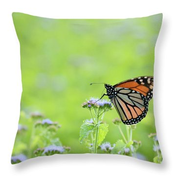 Monarch And Mist Throw Pillow by JD Grimes