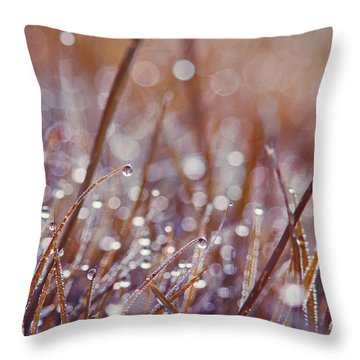 Mondo 02 - S08c Throw Pillow by Variance Collections